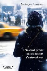 L_instant_precis_ou_les_destins_s_entremelent_poster